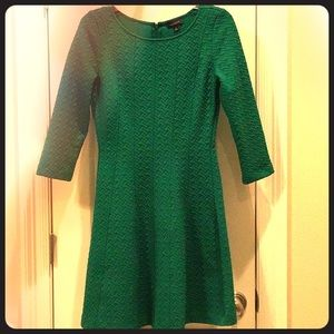 Limited Green Panel Dress